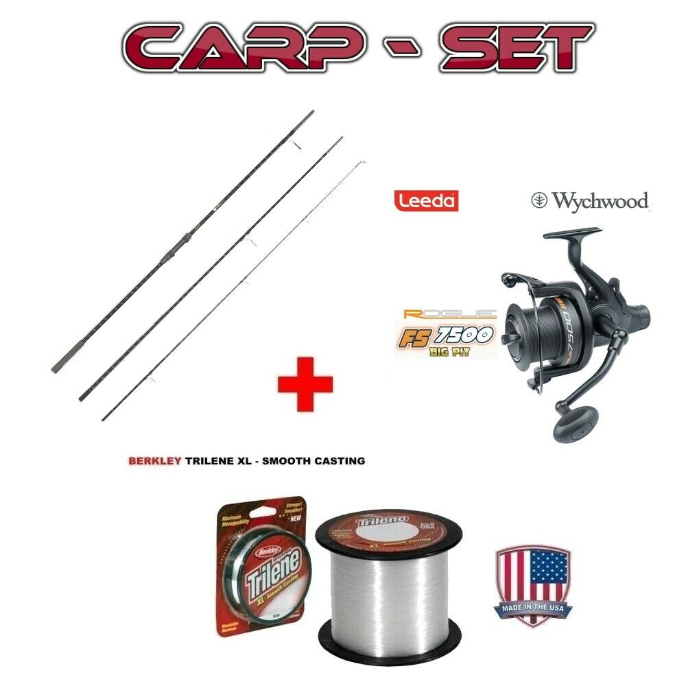 Rookie Carp 3,90m 3,5LB + LEEDA Rogue FS7500 BP mit 420m 35er Berkley Trilene