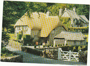 Unused-Postcard-Devon-Thatched-Cottage-Bucklands-in-the-Moor