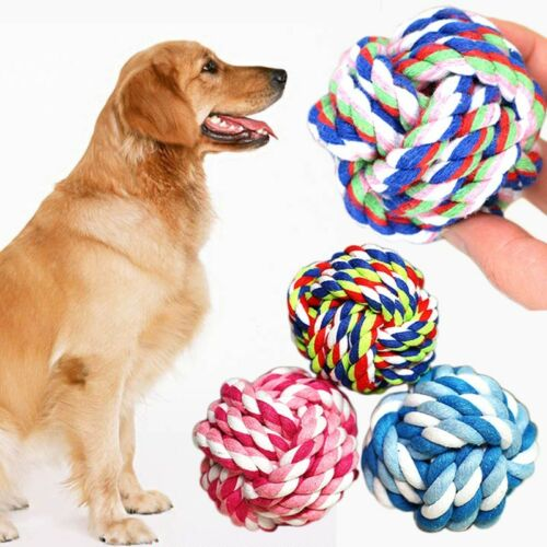 Dog Teddy Chew Knot Toys Pet Puppy Teeth Bear Braided Training Tough Strong Rope