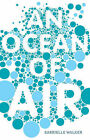 An Ocean of Air: A Natural History of the Atmosphere by Gabrielle Walker (Hardback, 2007)