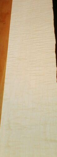 CATENACCIO acero Collo Neck geriegelt 1000 x120x50 mm Tonholz tonewood MapleNeck