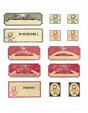 Make Halloween Potion Poison Bottle Labels Skull Bone Horror F/X Props Oddities