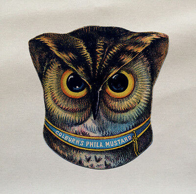 Owls Head Printed On Fabric Panel Make A Cushion Upholstery Craft