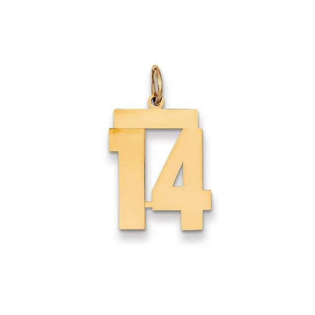 14k Yellow Gold Medium Polished Number 14 Charm Lm14