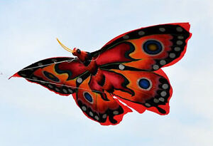 Handmade Butterfly Kite with 4.5 FT Wingspan From Bail
