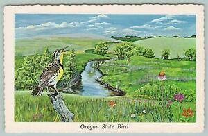 Oregon-State-Bird-Western-Meadowlark-Rolling-Countryside-1968-Artist-Ken-Haag