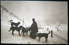 Switzerland~1900's ST. BERNARD DOGS~MONK~PERROCHET RPPC