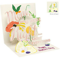 3d Greeting Card From Up With Paper - Mother's Day You Were Right - Upwpmd1204