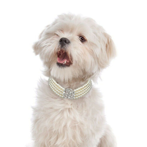 Dog Necklace Faux Pearls Diamante Accessory Puppy Chihuahua Party Show Jewelry