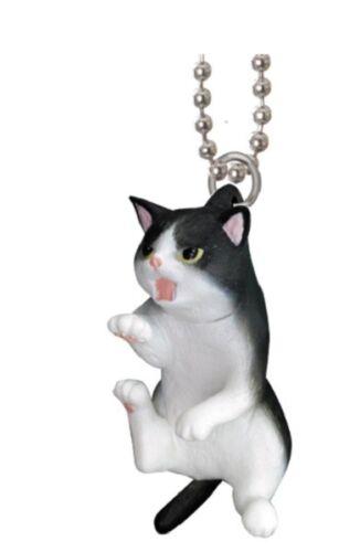B43 Epoch Boring Cat Gets Angry Figure Hanging Strap Tuxido Black White Mad Neko