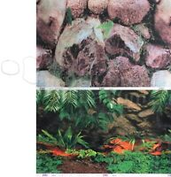 Rock Wall/amazon Rainforest 2 Scene 18-20h Aquarium/terrarium Background