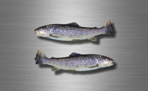 2x sticker vinyl fish boat kayak canoe fishing decal trout feshwater