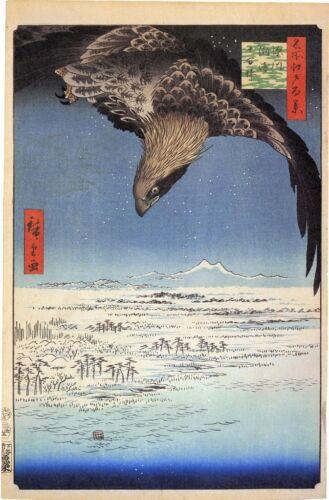 Hiroshige 100 Famous Views of Edo Soaring Eagle Japanese Art Fine Art Print