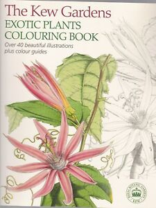 The-Kew-Gardens-Exotic-Plants-Colouring-Book-Paperback-40-Illustrations-amp-Guide