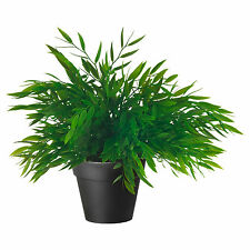 IKEA FEJKA Artificial Green House Bamboo Plant in Pot (28cm Tall)