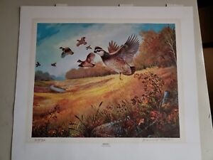 Details about WILDLIFE PRINT BY BERNARD MARTIN Signed 307/350 Quail