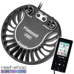 Kessil-A80-Tuna-Blue-amp-Spectral-Controller-X-Bundle-Nano-Reef-LED-amp-Controller