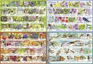 Gibsons-Jigsaw-Puzzle-WOODLAND-SEASONS-Spring-Summer-Autumn-Winter-2000-Pieces