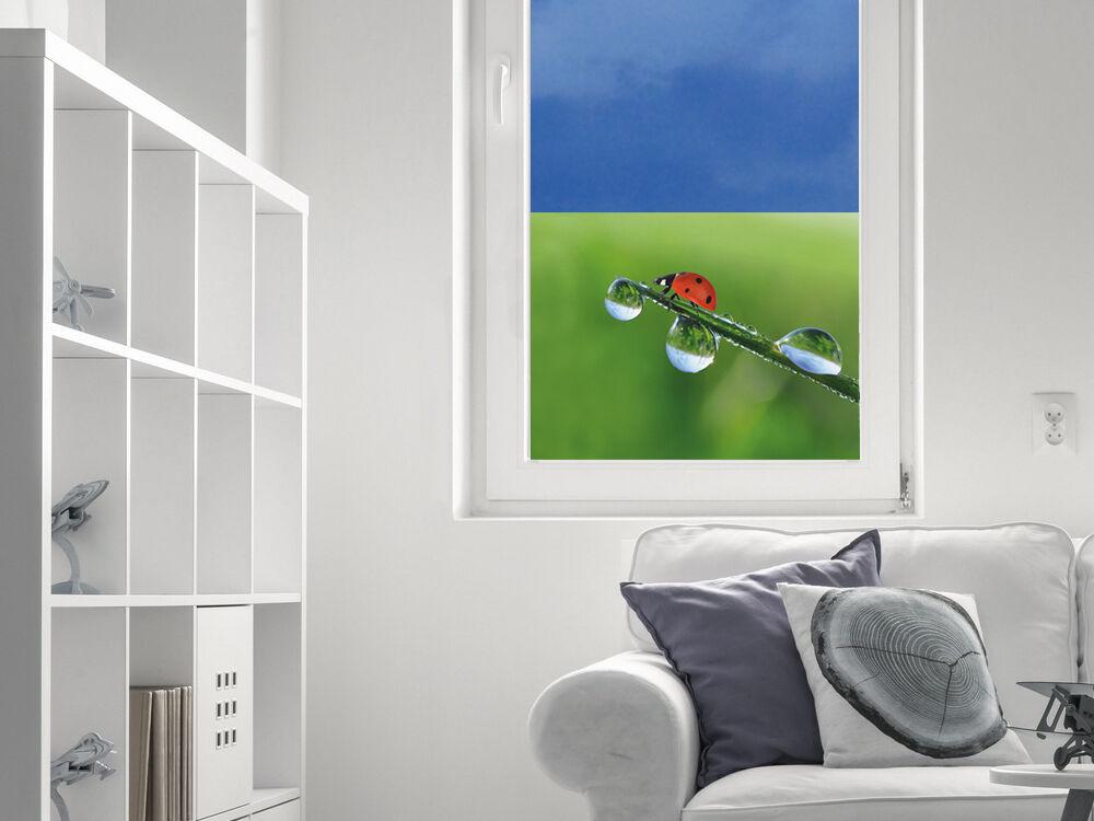Prossoezione visiva Pellicola Vetro Finestra di vetro Coloreeeate per per per soggiorno Coccinella Erba 2a4fac