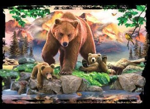 Grizzly Bear Family HEAT PRESS TRANSFER for T Shirt Sweatshirt Tote Fabric #227f