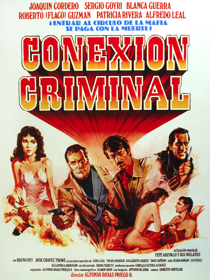 5948 Conexion Criminal movie POSTER.Interior design.Professional Decoration Art