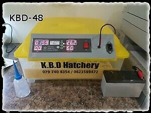 Used egg incubator in South Africa | Gumtree Classifieds in