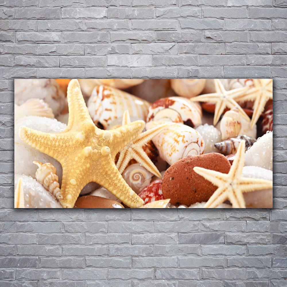 Wandbilder Glasbilder Druck auf Glas 120x60 Seesterne Muscheln Kunst