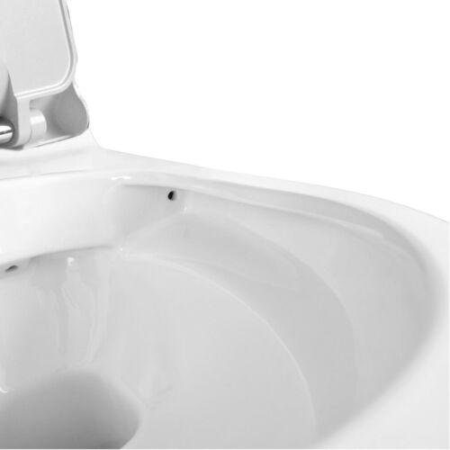 """Temtasi Wand-Dusch-WC /""""Harmony Norim/"""" ohne Armatur mit Sicherheitsset"""