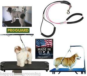 Big Dog Heavy Duty Grooming Arm