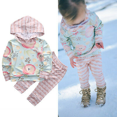 Floral Baby Girls Long Sleeve Sweatshirt+Pants Outfits 2PCS Hooded Clothes Set