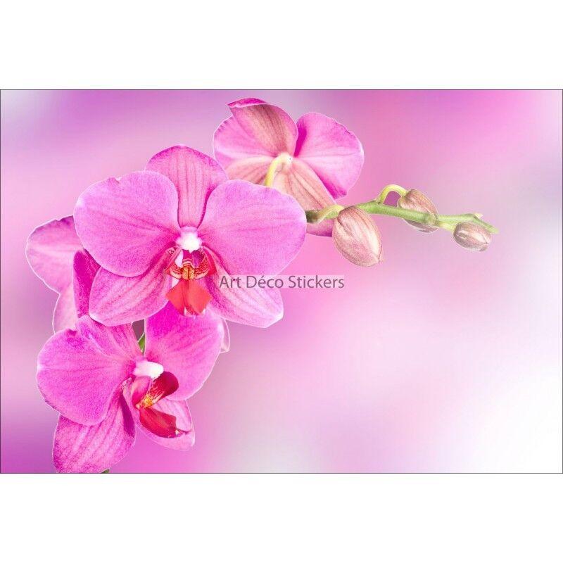 Pegatinas de Parojo Decoración Orquídea Ref 11114 11114
