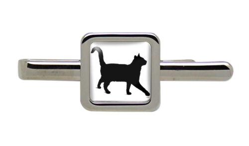 Cuadrado Gato Negro Clip de Corbata diapositiva//