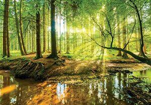 144x100inch-Papier-Peint-Photo-Mural-Forest-Stream-Vert-Arbres-Art-Adhesif
