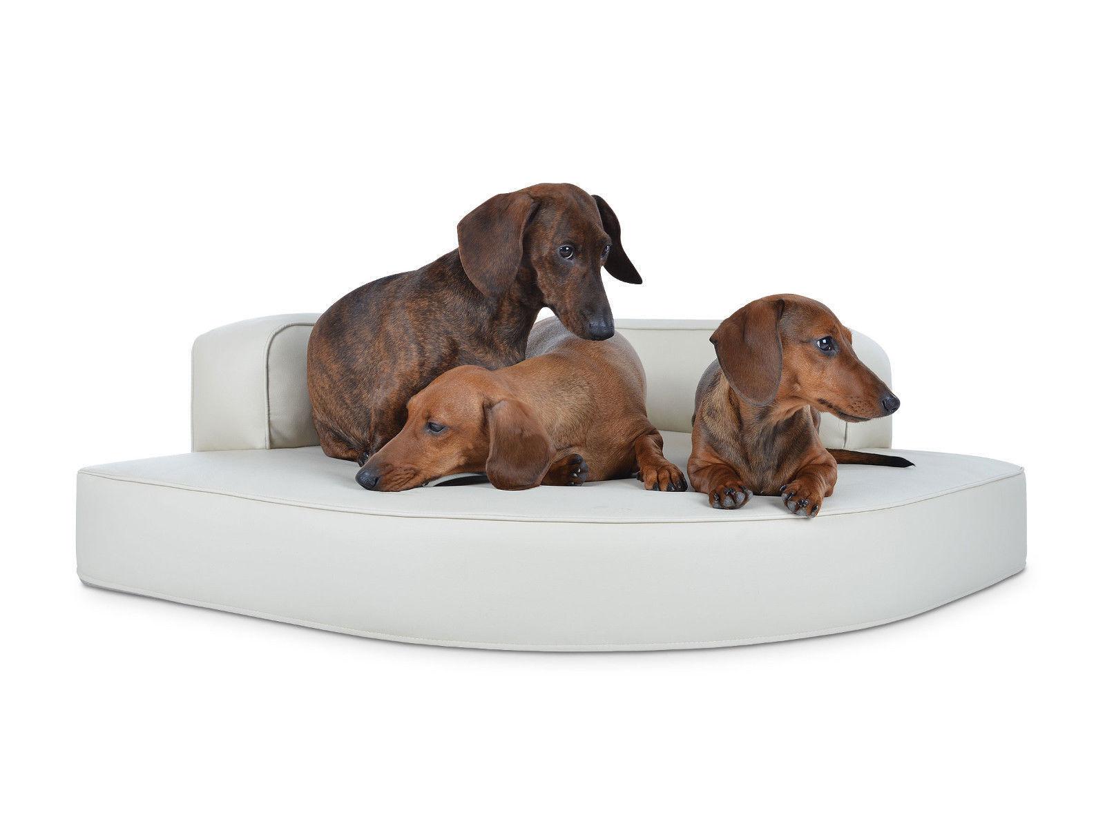 Top Padsforall Cama para para para Perro Cuero Artificial Sofá Cesta Esquina Mate M L XL 9aa73f