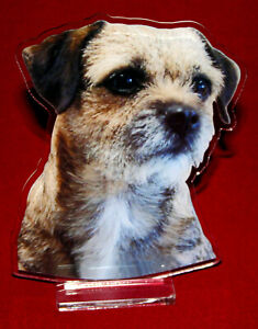 statuette-photosculptee-10x15-cm-chien-border-terrier-1-dog-hund-perro-cane