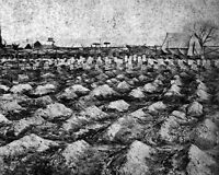 8x10 Civil War Photo: Soldiers' Graves Near General Hospital, City Point