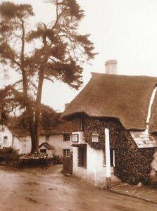 Ephemera-Reprint-Picture-Winsford-The-Royal-Oak-Inn-1930-Da3
