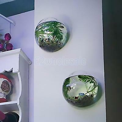 1x Clear Glass Wall Hanging Vase Plants Flowers Garden Home Hydroponic Decor