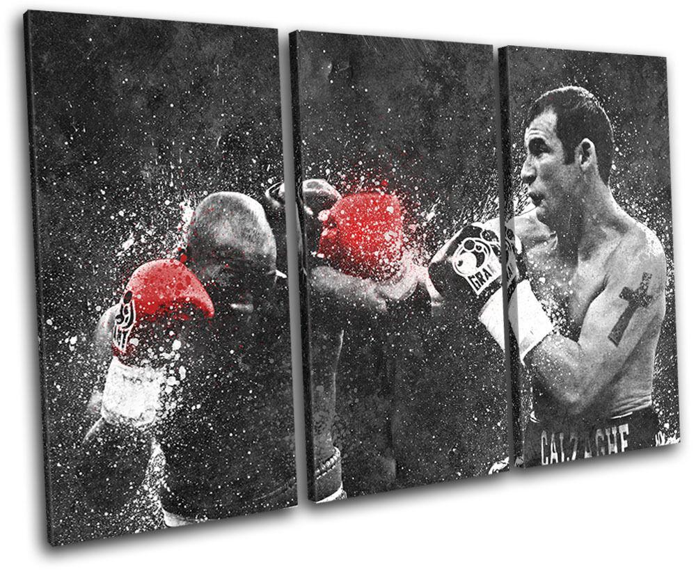 Joe Calzaghe Boxing Grunge Sports TREBLE LONA pa rojo Foto  arte Foto rojo impresion 34c79f