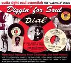 Diggin For Soul von Various Artists (2010)