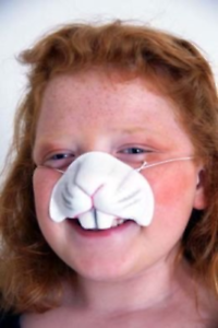 Easter-World Book Day-Animal-Farmyard-Peter RABBIT NOSE Fancy Dress Accessory