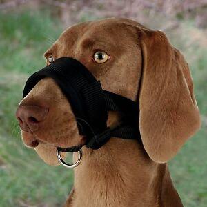Trixie-Nylon-Loop-DOGS-MUZZLE-Walking-Aid-Inhibits-Biting-Dog-Training-3-Sizes