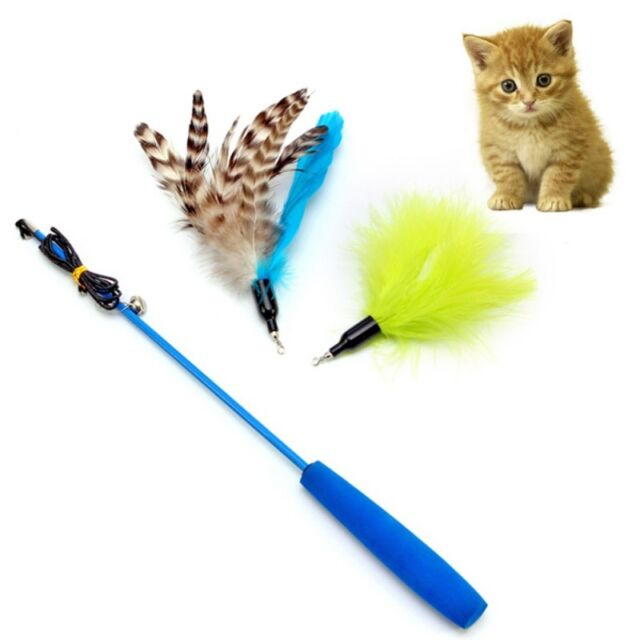 Kitten Funny Cat Pet Fun Toy Teaser Interactive Chaser, Wand + Colorful Feather