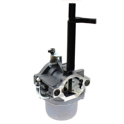 Carburetor For Briggs /& Stratton 20H132-0110-E9 Nikki Snowblower 698305 793778