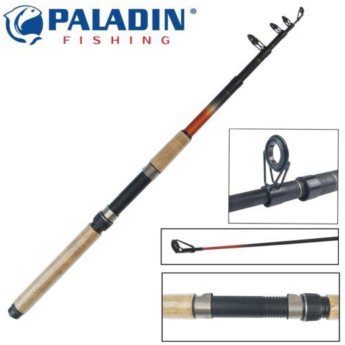 Spinnrute Paladin Concept Zielfischrute Forelle Barsch Spin 210cm 40g