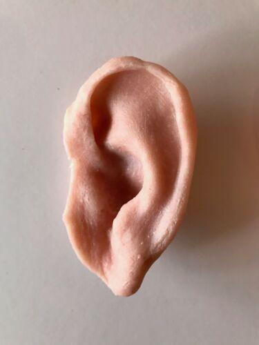 Severed ear prosthetics Left gelatine ear.