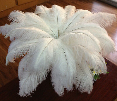 10pcs white ostrich feathers decor wedding&Home,10-12inches/25-30cm tn80