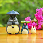 Totoro Studio Ghibli My Neighbor Microlandschaft Resin Pot Garden Mini Figure