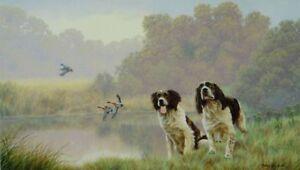 Nigel-Hemming-WATERSPORTS-SPRINGER-SPANIELS-Gun-Dogs-Shooting-Fieldsports-Art