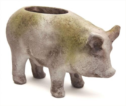 Pig Garden Pot Planter Statue by Orlandi Statuary Made of Fiberstone-FS1118
